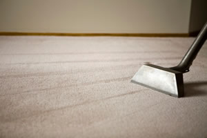 carpet cleaning company in Denver 1